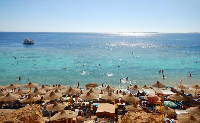 Egypt Dive Resort 3
